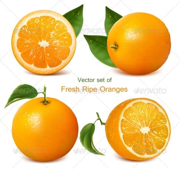 Fresh Ripe Oranges with Leaves - Food Objects