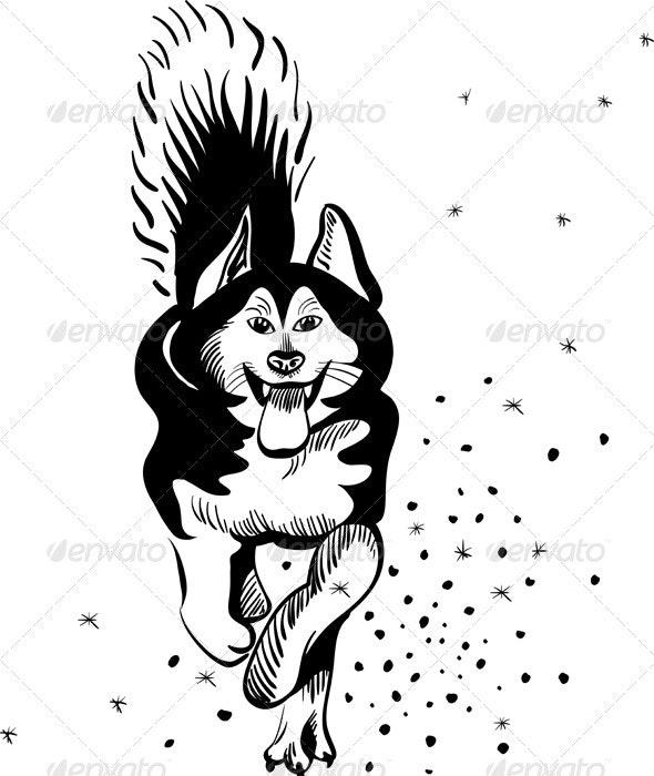 Dog Alaskan Malamute breed - Animals Characters
