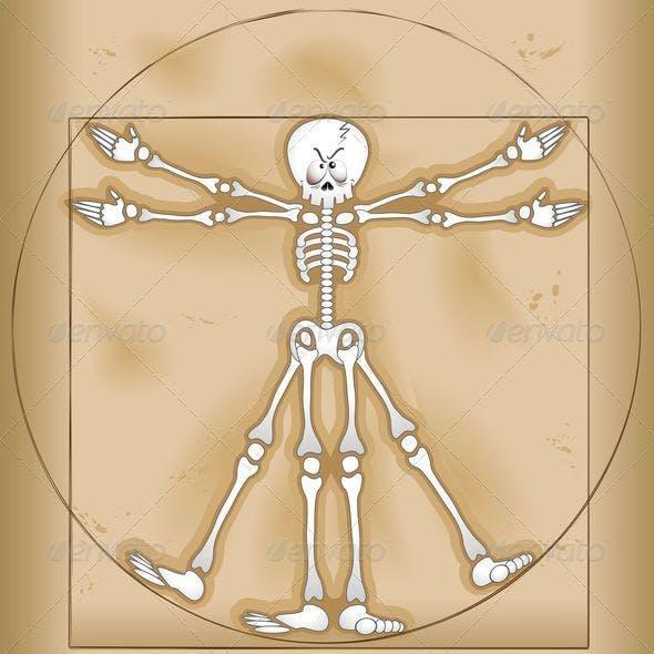 Vitruvian Man Skeleton