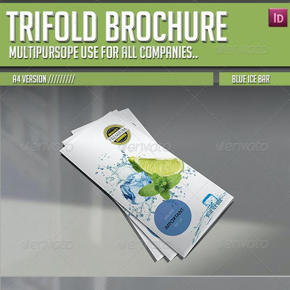 Trifold Brochure - Blue Ice Bar
