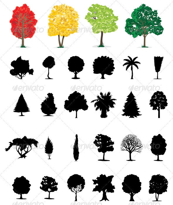 Assembly of trees2 - Flowers & Plants Nature