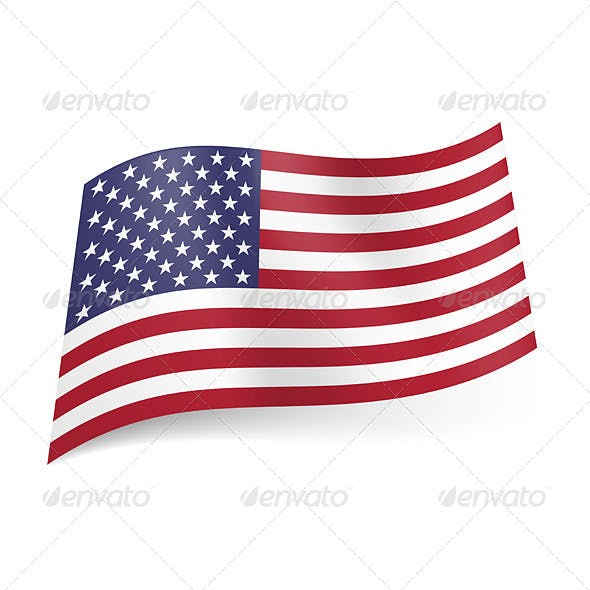 State Flag of the USA