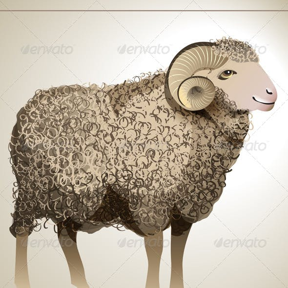 Vector Realistic Sheep