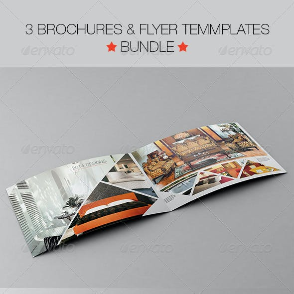 3 Bi-Fold Brochures and Flyer Template Bundle