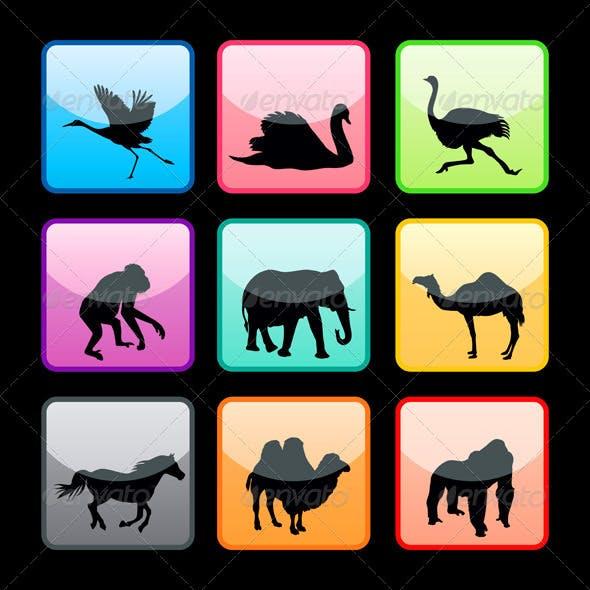Wild animals buttons set