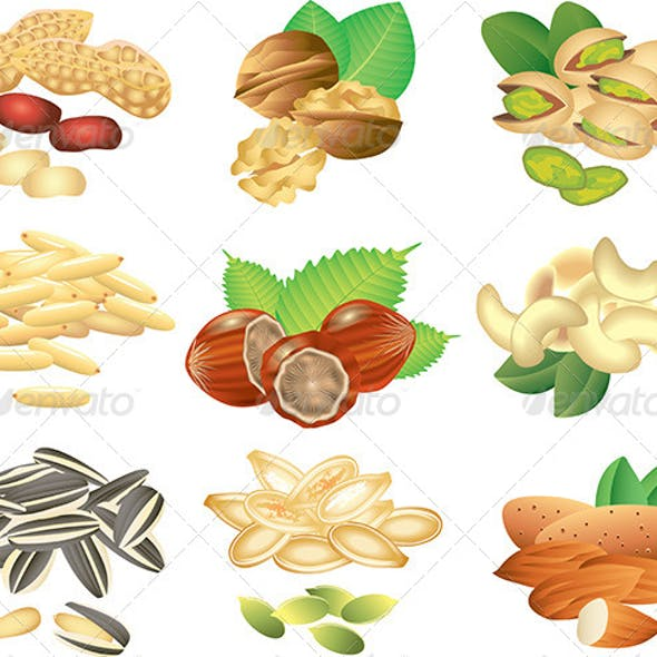 Nuts and Seeds Vector Set