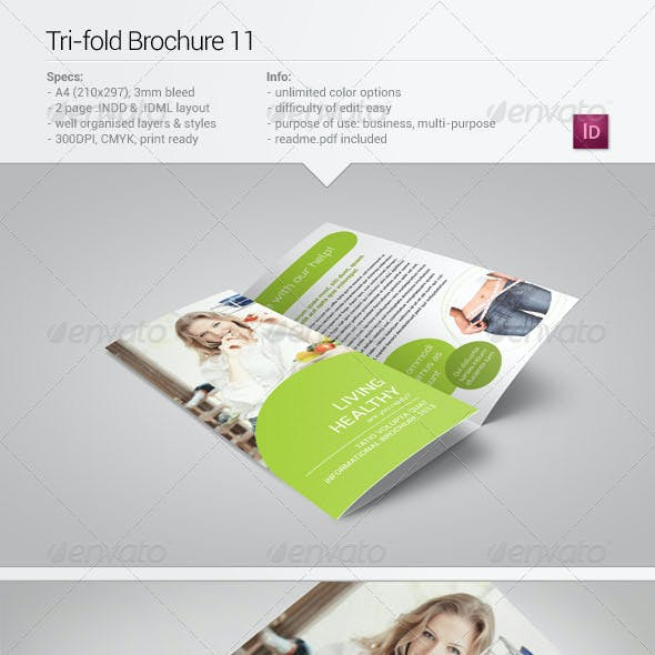 Tri-Fold Brochure 11