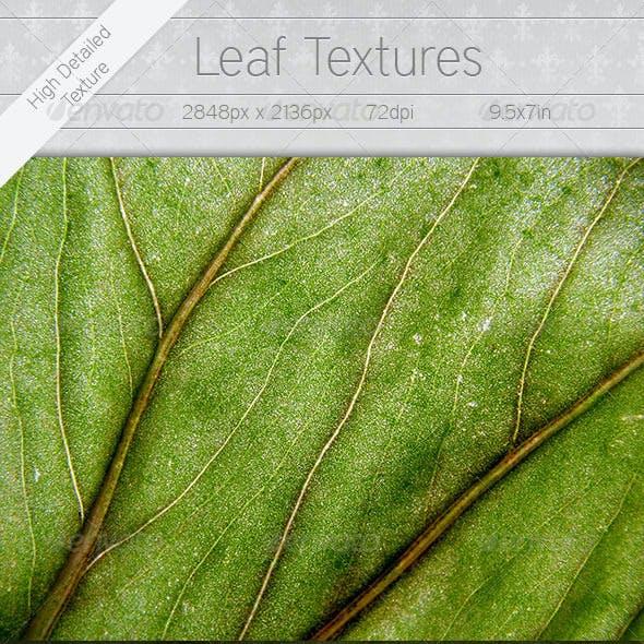 7 Leaf Textures