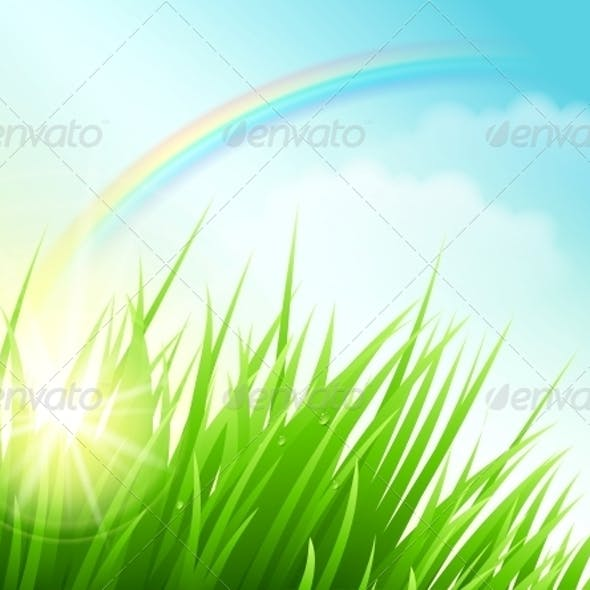 Green Field with Sun and Rainbow