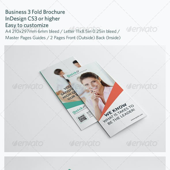 Business 3 Fold Brochure