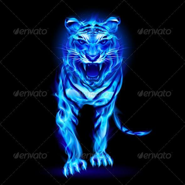 Blue Fire Tiger.