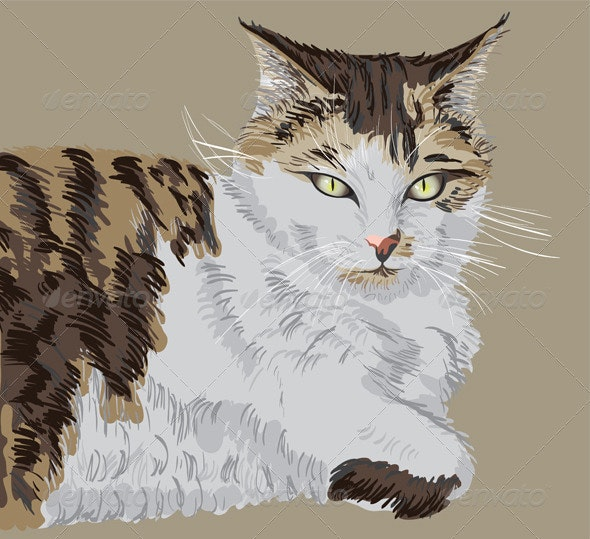 Illustrated portrait of the cat - Animals Characters