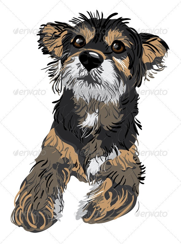 Cute small dog - Animals Characters