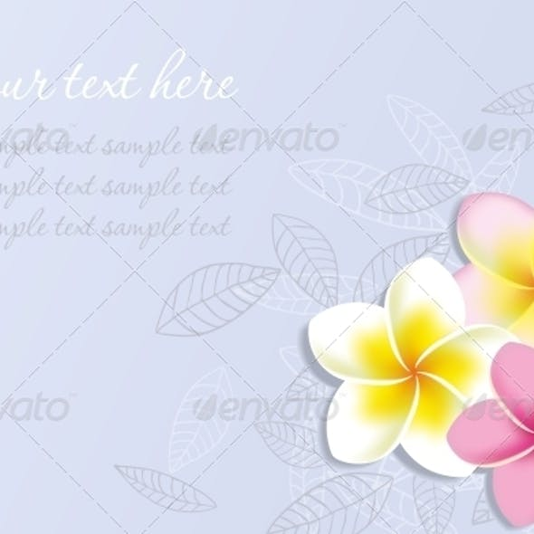 Vector Background with Plumeria Flowers