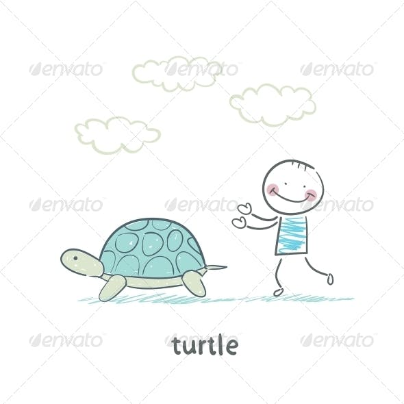 Tortoise and Person