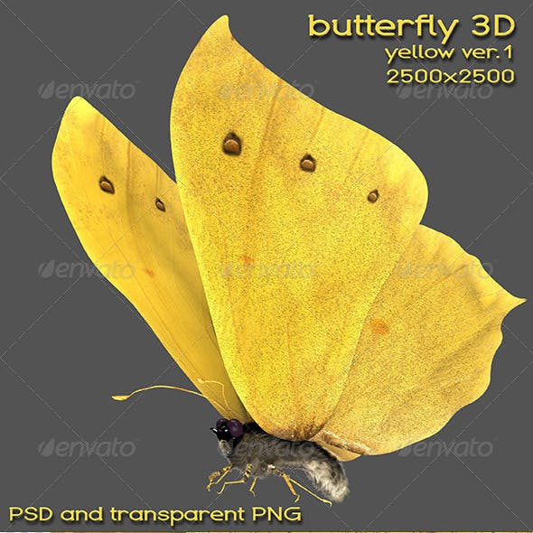 3d Yellow Butterfly