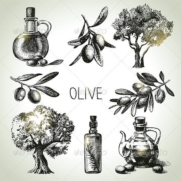 Olive Hand Drawn Set