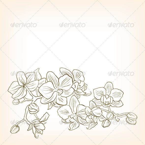 Abstract Floral Vector Illustration for Design