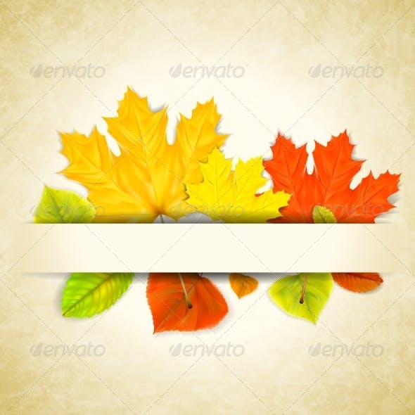 Autumn Leaves on Scratched Paper Background
