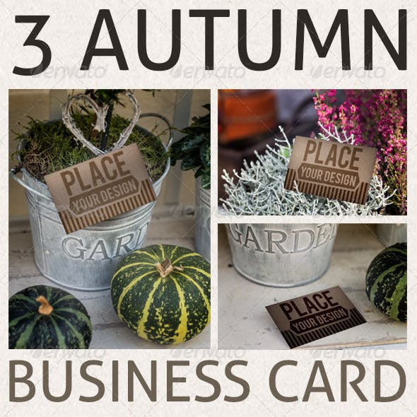 Business-Card Mockups in Autumn Scenery