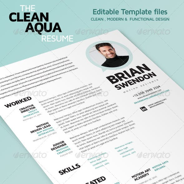 Simple Clean Resume/CV