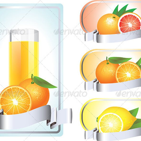 Labels with Citrus Fruits