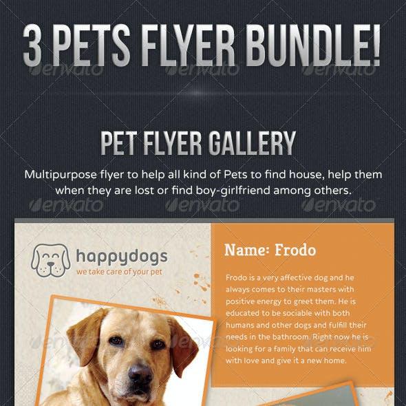 Pets Flyer Bundle