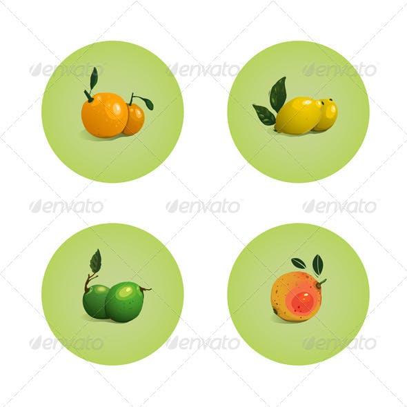 Orange Grapefruit Lime Lemon Citrus Fruits Set
