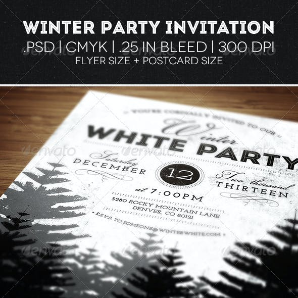 Winter Party Flyer & Invitation