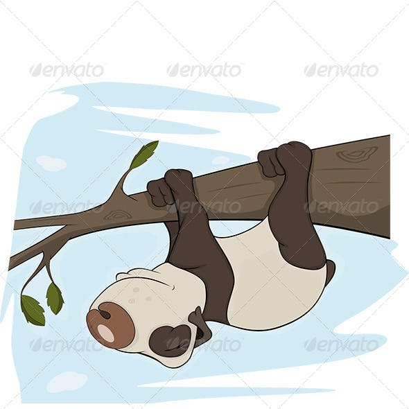 Panda Bear Sleeps on a Tree Cartoon
