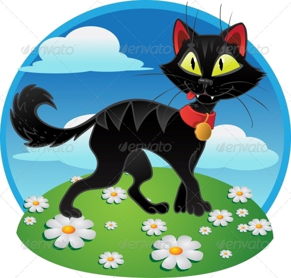 Black Cat on Color Background - Animals Characters