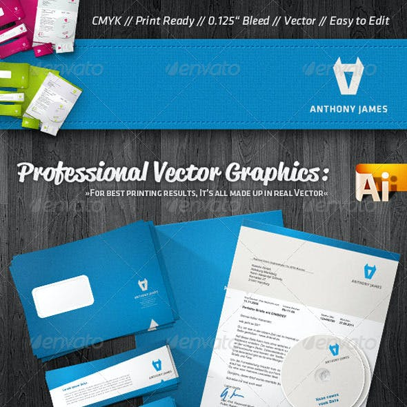 Professional Agency Corporate Identity Package