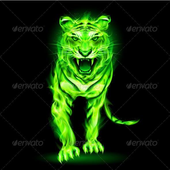 Green Fire Tiger.