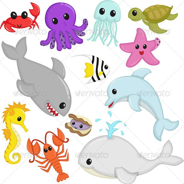 Marine Wildlife Animals