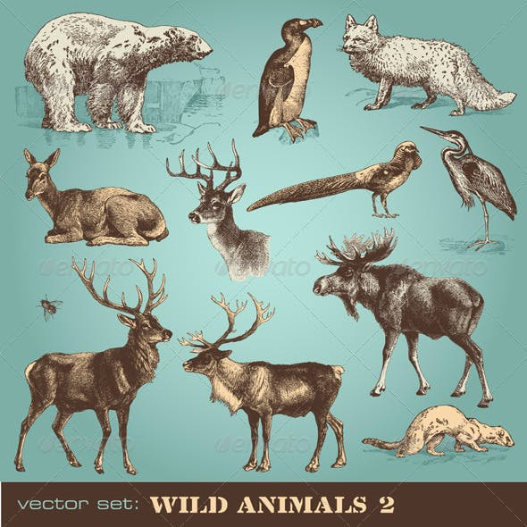 Vector Set: Wild Animals (2)