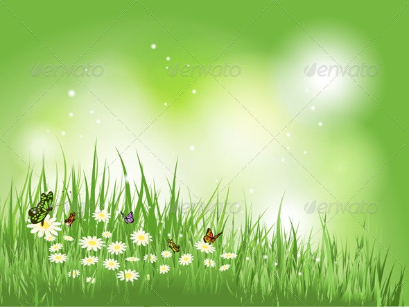 Butterflies and flowers in grass - Nature Conceptual