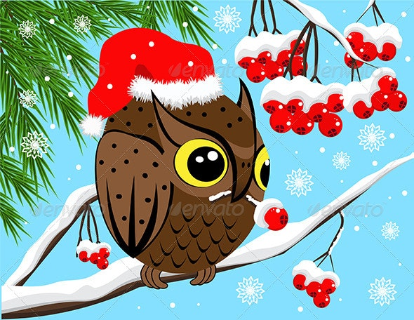 Red Berries and Owl  - Animals Characters