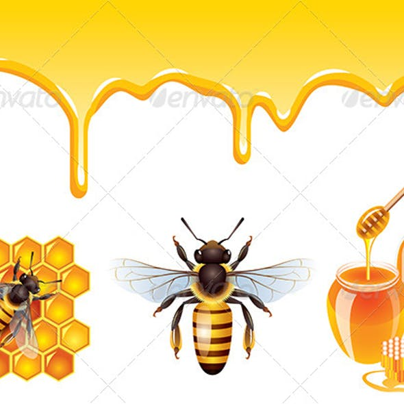Bee Vector Set