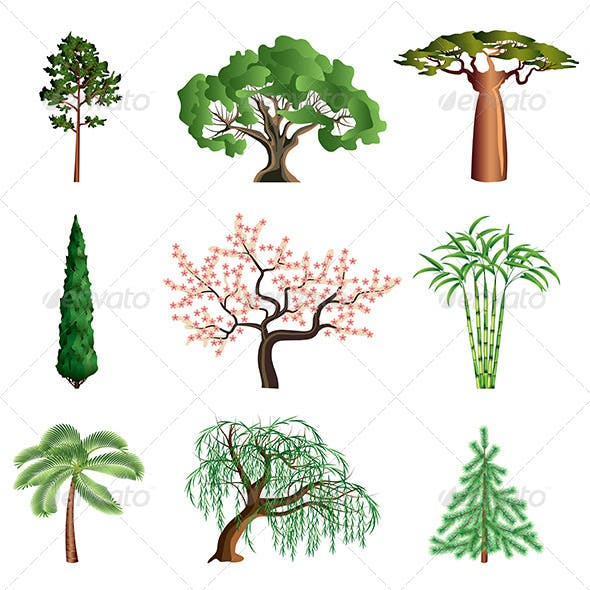 Trees Isolated on White Vector Set