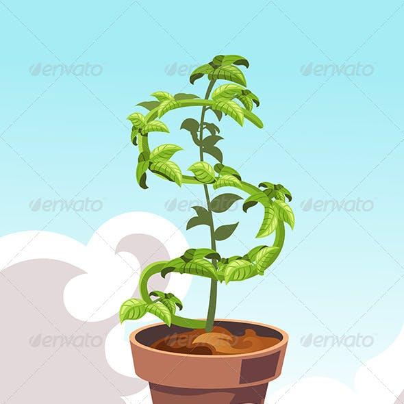 Hand Holding a Money Dollar Tree
