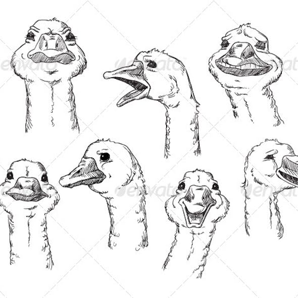 goose with Different Facial Expressions of Human