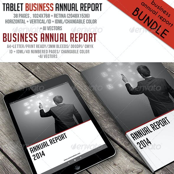 Business Annual Report Bundle