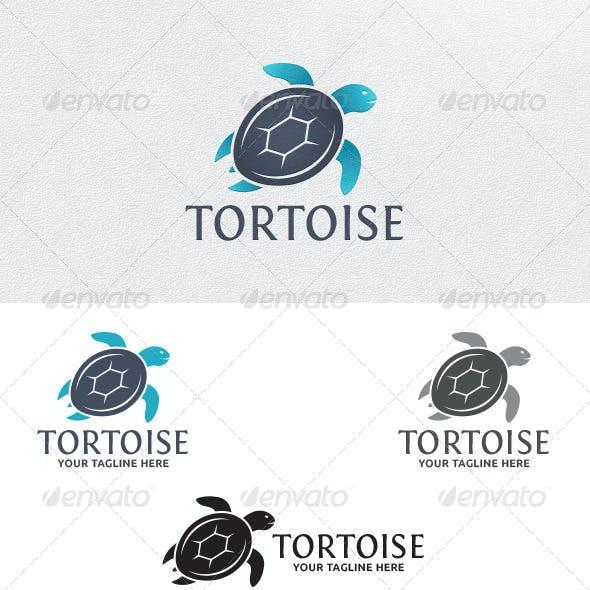 Tortoise - Logo Template
