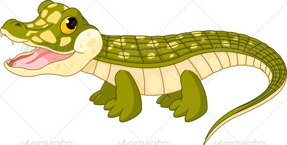 Baby  crocodile - Animals Characters