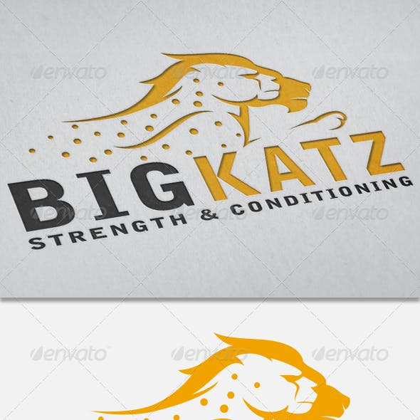 BigKatz- Gym and Crossfit logo