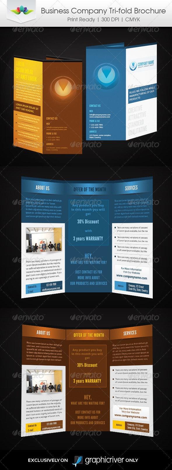 Business Company Tri-Fold - Corporate Brochures