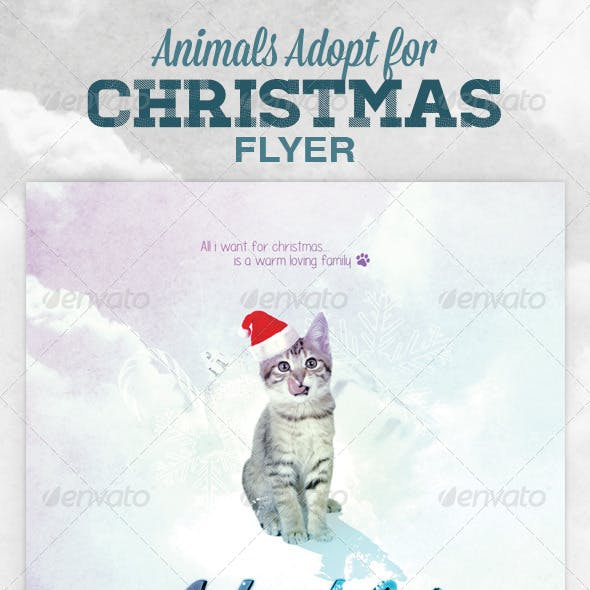 Animals - Cats Dogs Adopt for Christmas