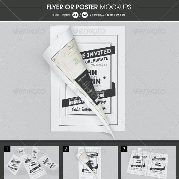 Flyer / Poster Mockups