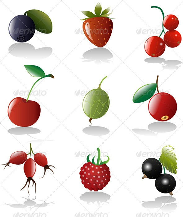 Berries icon set - Food Objects