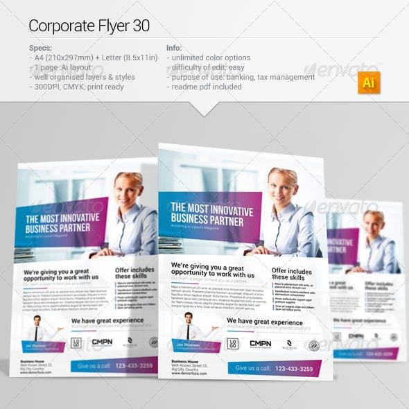 Corporate Flyer 30